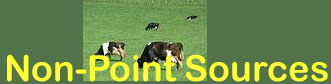 "Image of cows and ""Non-point sources"" text"